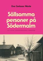 Sällsamma Personer På Södermalm - Ett Stycke Stockholmshistoria Underifrån