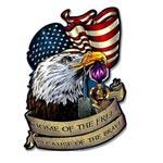 Plåtskylt Retro 50 x 70 cm / American eagle