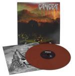Plåtdekor / Bildörr Police med spegel 68 x 60cm