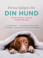 Första Hjälpen För Din Hund