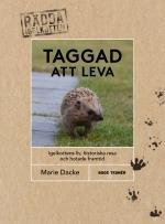 Taggad Att Leva - Igelkottens Liv, Historiska Resa Och Hotade Framtid