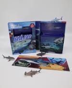 Hajar - Upptäck Roliga Fakta Om Hajarnas Värld