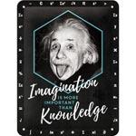 Plåtskylt Retro 15x20 cm / Einstein Imagination