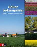 Intersektionella Perspektiv På Våld I Nära Relationer