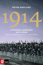 Stridens Skönhet Och Sorg 1914 - Första Världskrigets Inledande År I 68 Korta Kapitel