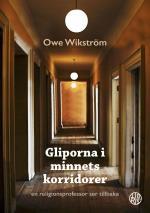 Gliporna I Minnets Korridorer - En Religionsprofessor Ser Tillbaka