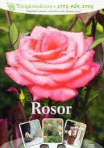 Trädgårdsskolan / Rosor