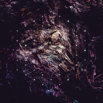 Psychonaut: Unfold The Man