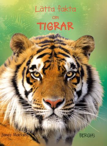 Lätta Fakta Om Tigrar