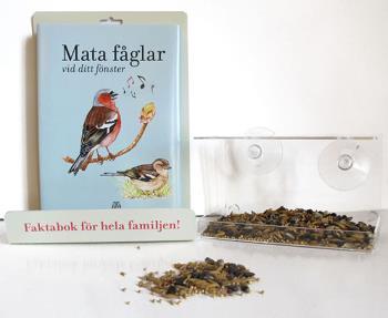 Mata Fåglar Vid Ditt Fönster