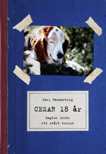 Cesar 18 År - Dagbok Inför Ett Svårt Beslut