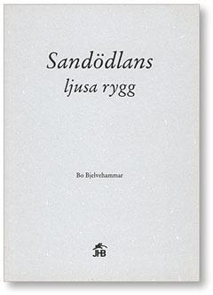 Sandödlans Ljusa Rygg