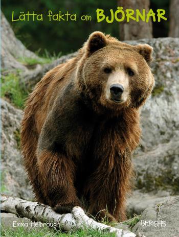 Lätta Fakta Om Björnar