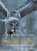 Kaxiga Fåglar - Personligheter Och Relationer I Fågelvärlden