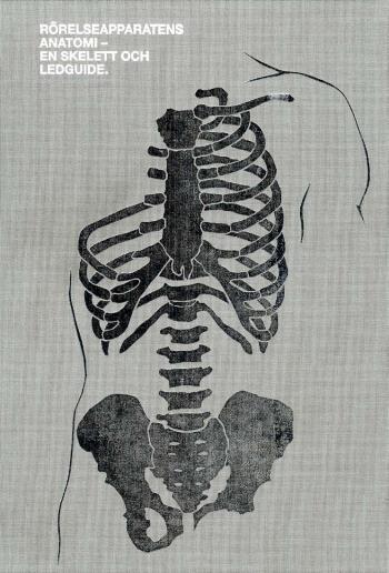 Rörelseapparatens Anatomi - En Skelett Och Ledguide