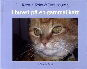 I Huvet På En Gammal Katt