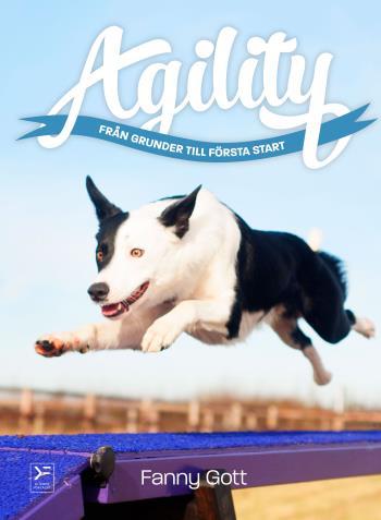 Agility - Från Grunder Till Första Start