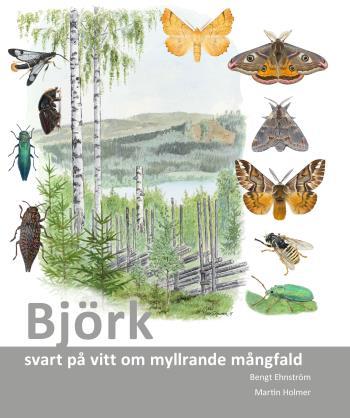 Björk - Svart På Vitt Om Myllrande Mångfald