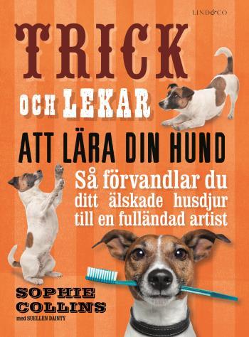 Trick Och Lekar Att Lära Din Hund - Så Förvandlar Du Ditt Älskade Husdjur..
