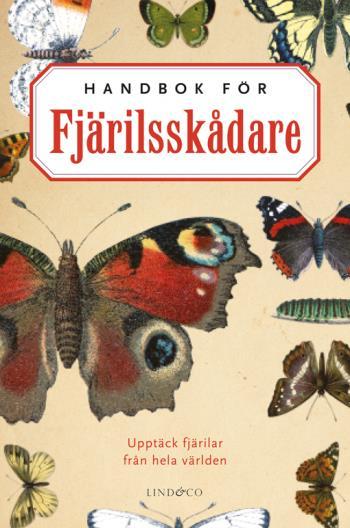Handbok För Fjärilsskådare - Ujpptäck Fjärilar Från Hela Världen