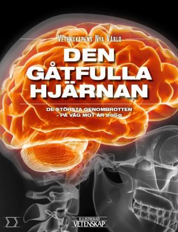 Den Gåtfulla Hjärnan