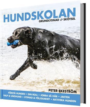 Hundskolan - Grundlydnad & Skötsel