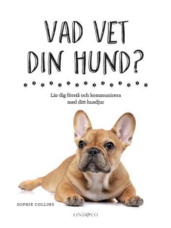 Vad Vet Din Hund? - Lär Dig Förstå Och Kommunicera Med Ditt Husdjur
