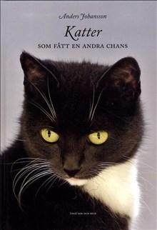 Katter Som Fått En Andra Chans