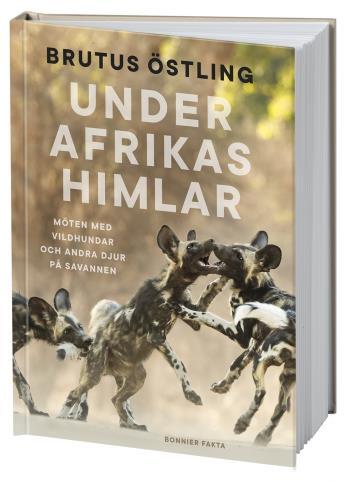 Under Afrikas Himlar - Möten Med Vildhundar Och Andra Djur På Savanner