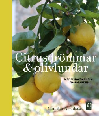 Citrusdrömmar & Olivlundar - Medelhavskänsla I Trädgården