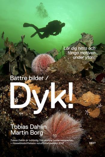 Bättre Bilder / Dyk! - Lär Dig Hitta Och Fånga Motiven Under Ytan