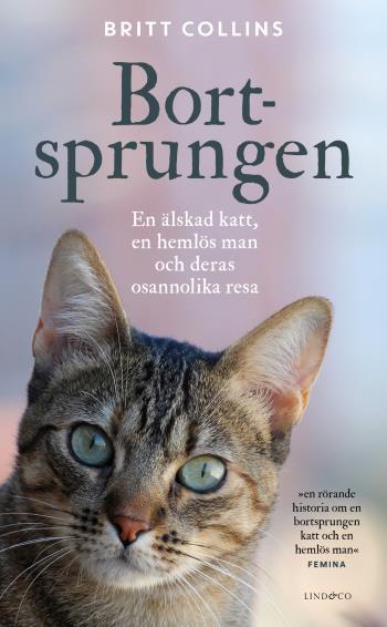 Bortsprungen - En Älskad Katt, En Hemlös Man Och Deras Osannolika Resa
