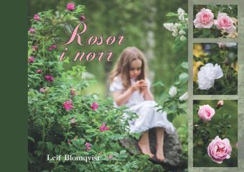 Rosor I Norr