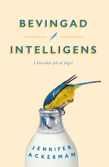 Bevingad Intelligens - I Huvudet På En Fågel
