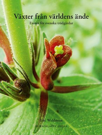 Växter Från Världens Ände - Exoter För Svenska Trädgårdar