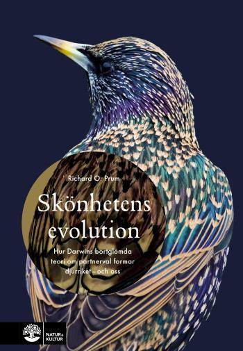 Skönhetens Evolution - Hur Darwins Bortglömda Teori Om Det Sexuella Urvalet Formar Djurriket - Och Oss