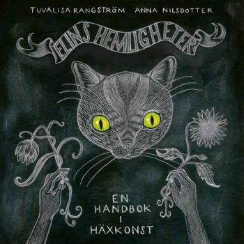 Elins Hemligheter - En Handbok I Häxkonst
