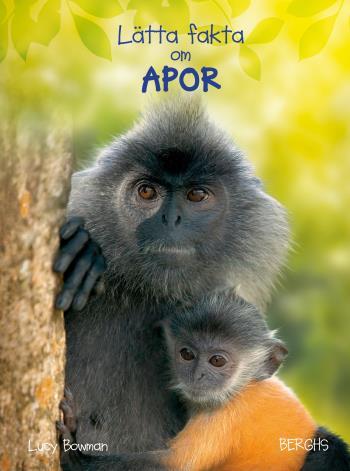 Lätta Fakta Om Apor