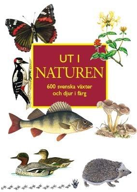 Ut I Naturen - 600 Svenska Växter Och Djur I Färg