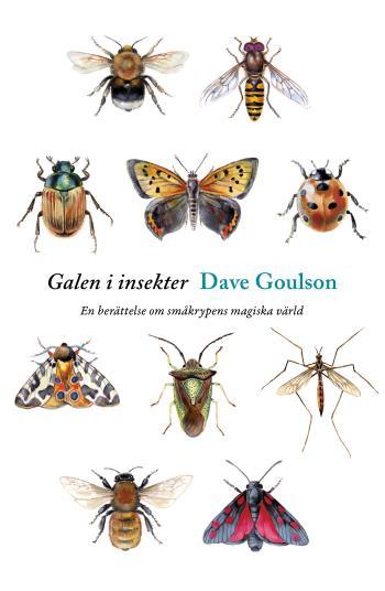 Galen I Insekter - En Berättelse Om Småkrypens Magiska Värld