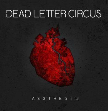 Läsglasögon Chaot Svart-brokig +2,5