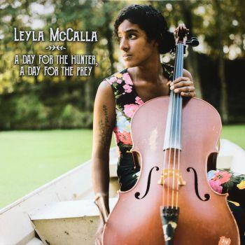 Läsglasögon Chaot Blå/Grön +2,5